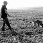 אימון גישוש - הליכה על עקבות אדם