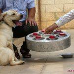 יוזם ומנהל פרוייקט כלבי הסרטן הוא אורי בקמן, מאלף כלבים בעל מוניטין. בקמן מחזיק בעזרה חידושים בתחום הכשרת כלבים לעבודות מיוחדות, כולל כלבי עזר ורפואה.
